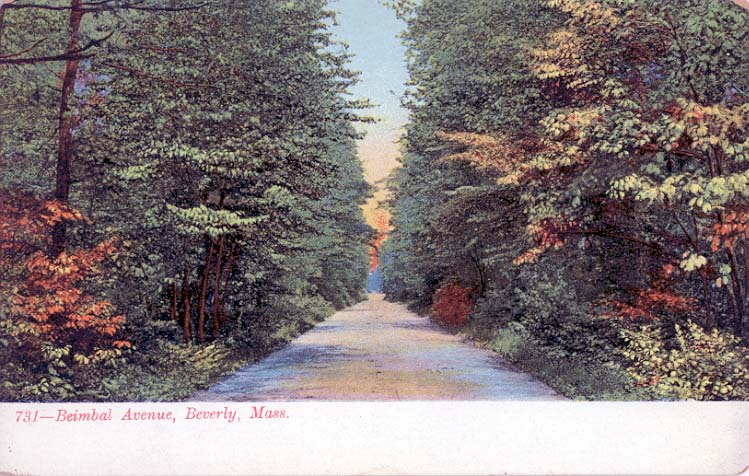 Postcard of Brimbal Avenue in Beverly, MA